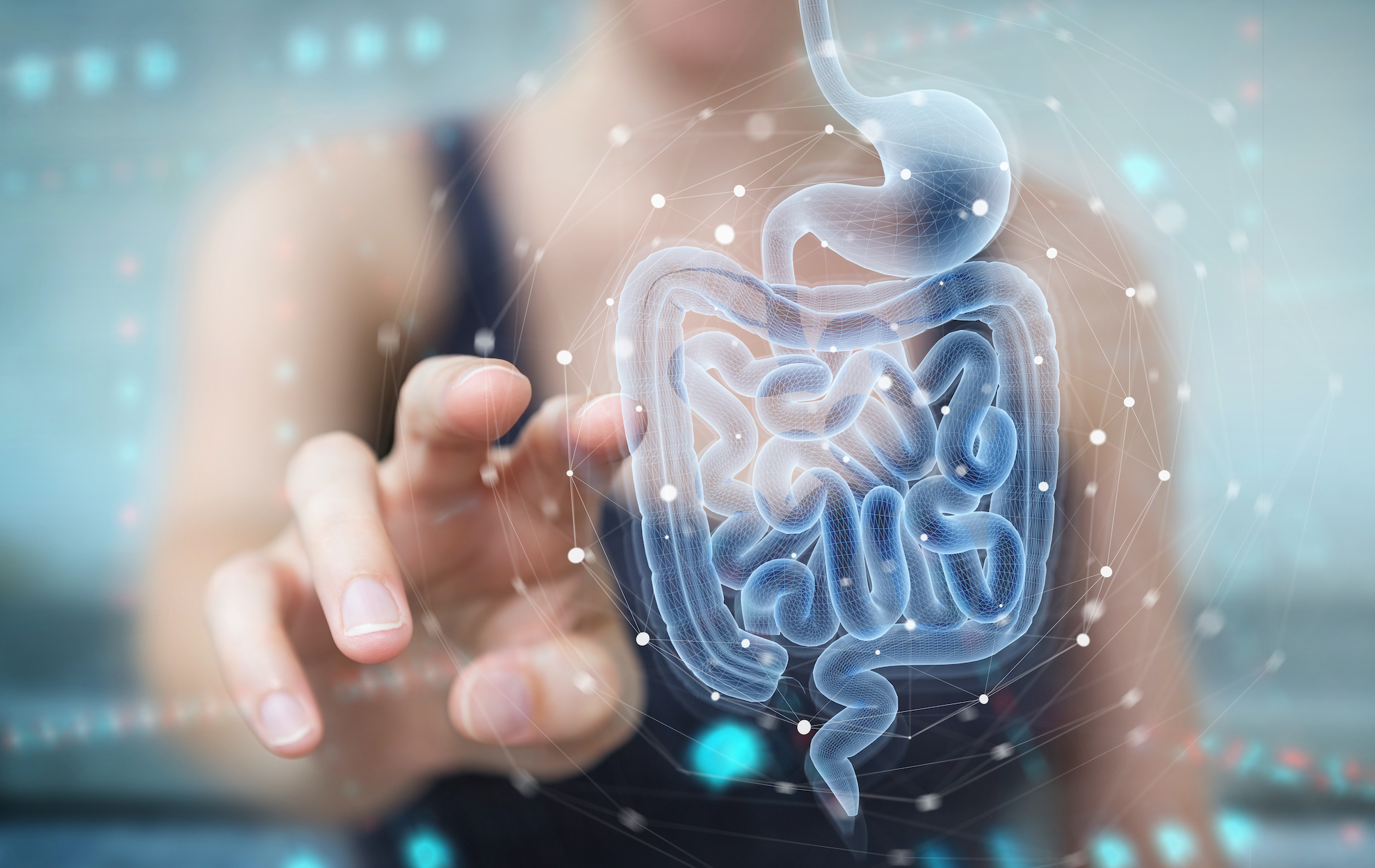 Gut Microbiome Reset